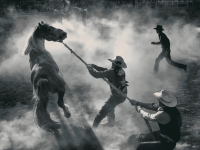 Rodeo movement
